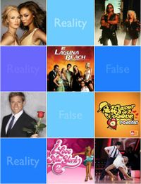 Reality_tv_lessons